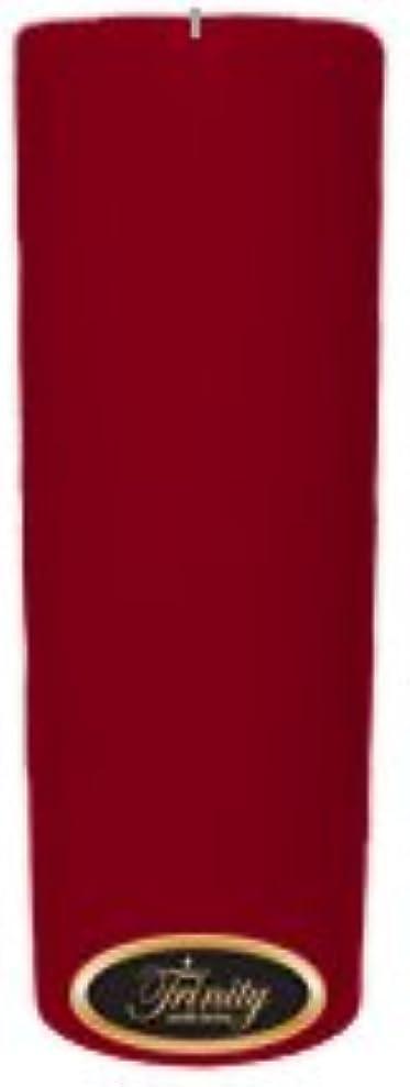 頼むアパル場所Trinity Candle工場 – Cinnamon Swirl – Pillar Candle – 3 x 9