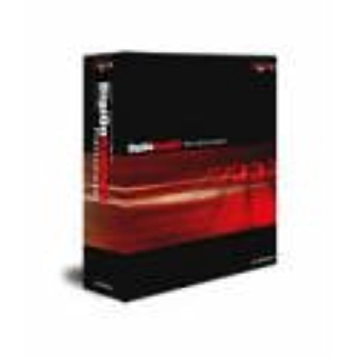 プロジェクター強度リクルートDigiOnSound 4 Professional