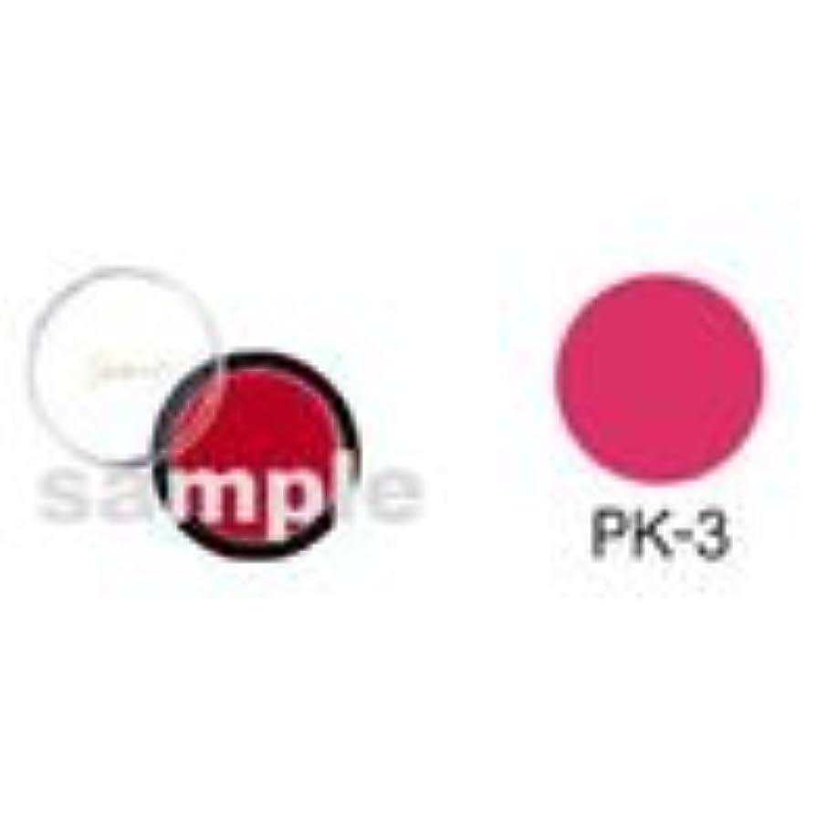 ヘッドレスプラスチック流出シャレナ カラーリップ PK-3