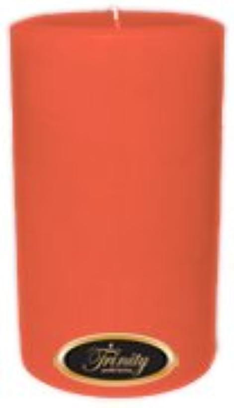 トロリーバス打たれたトラックアンテナTrinity Candle工場 – ベリーパッチ – Pillar Candle – 4 x 6