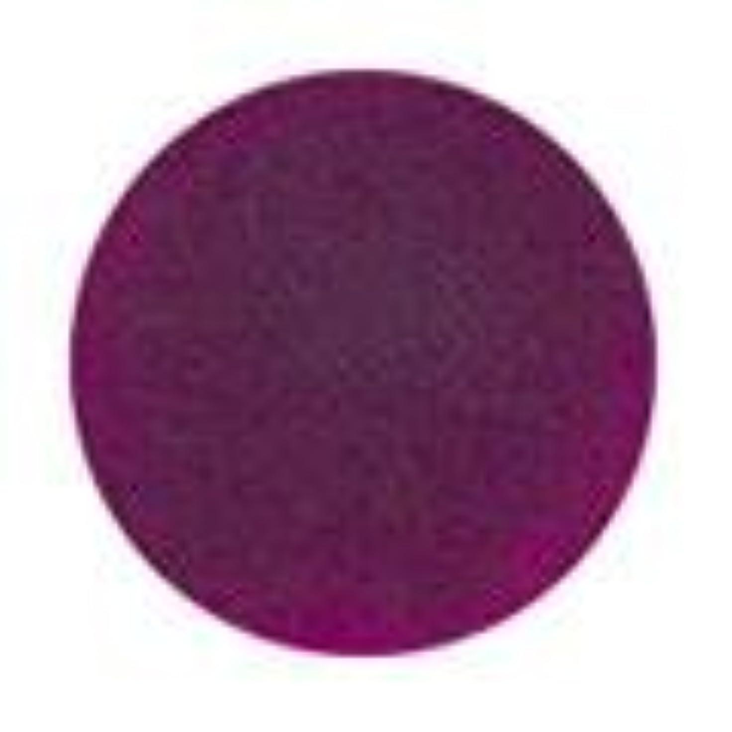 地下室チャート適切なJessica ジェレレーション カラー 15ml  487 ウインザーキャッスル