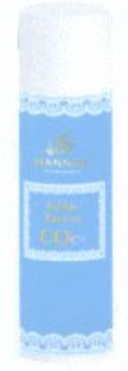 いっぱい飾り羽旅客ハニエル バブルエレクトロンCoe- 125g 雪室コーヒーセット