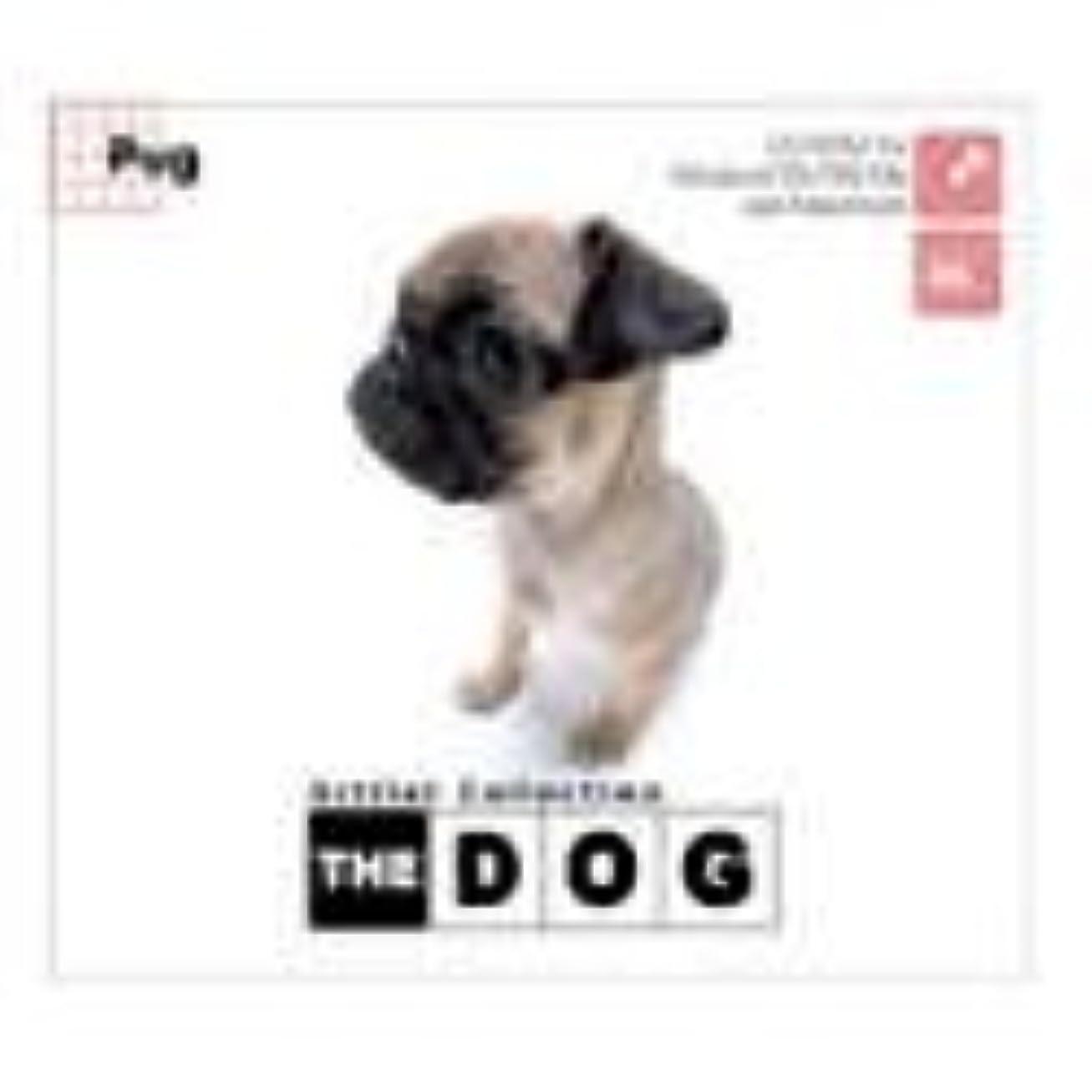 グレー出会い断線THE DOG ~Pug