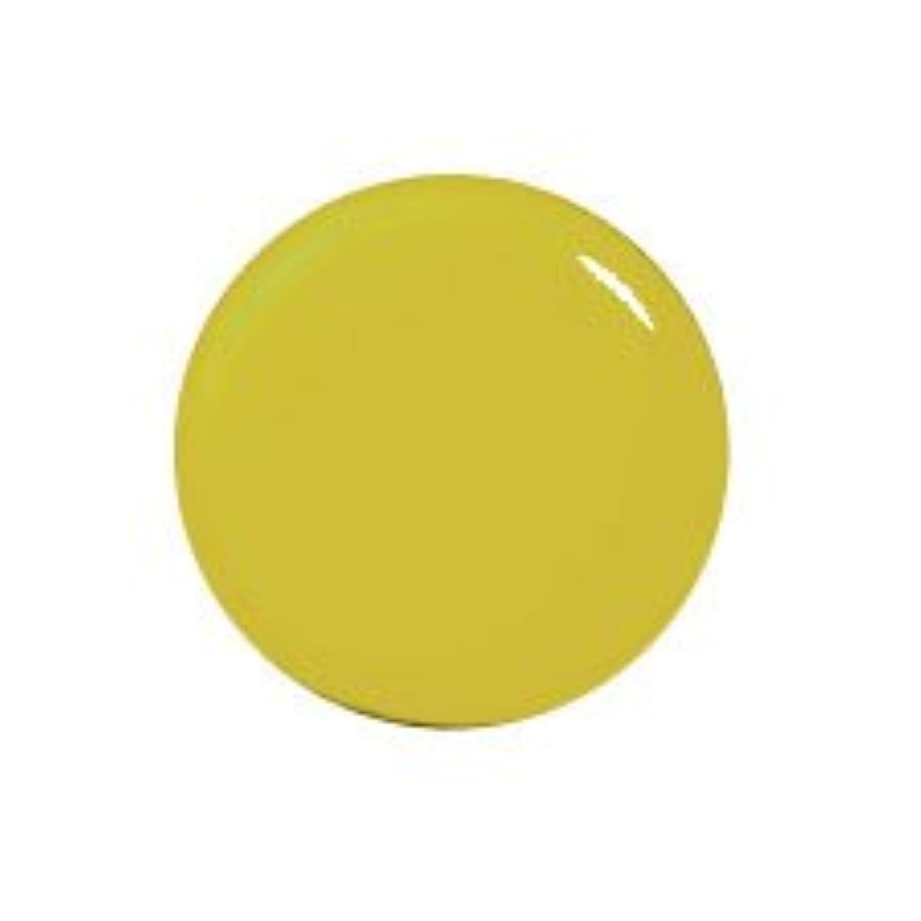 ラフレシアアルノルディサイズ振る舞いプティール カラージェル 162 ピスタチオオリーブ 2g