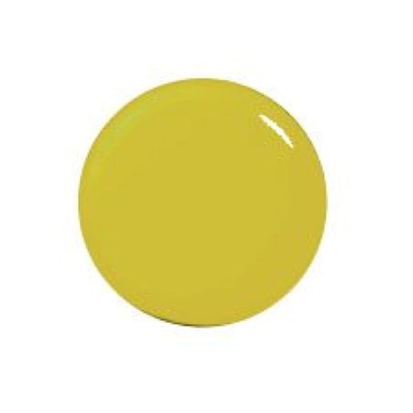 単位精神代表するプティール カラージェル 162 ピスタチオオリーブ 2g