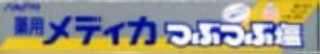 辛な教科書捨てるサンスター 薬用メディカ つぶつぶ塩 170g×80点セット (4901616005266)