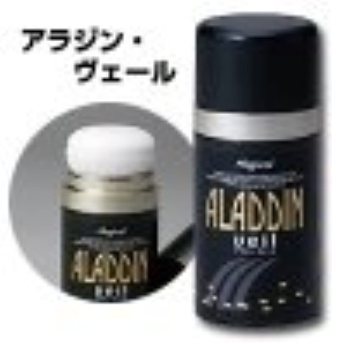 どんなときも敏感なガロンアラジン?ヴェール 薄毛隠し ファンデーション 15g