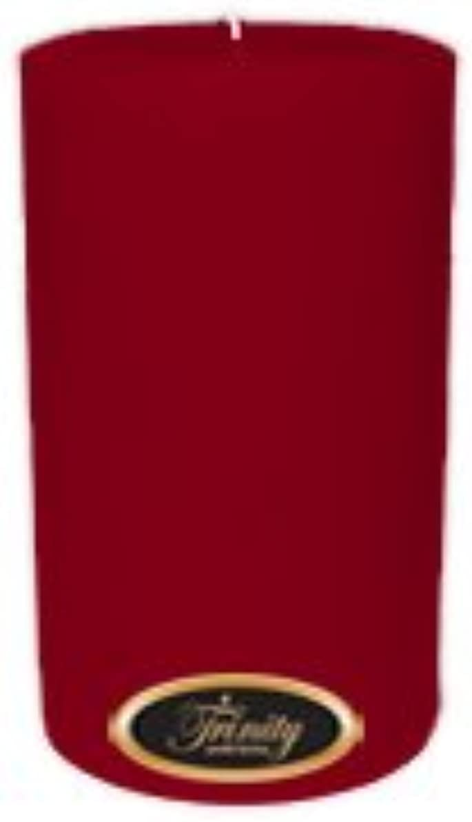 アンペア開始制限Trinity Candle工場 – Cinnamon Swirl – Pillar Candle – 4 x 6