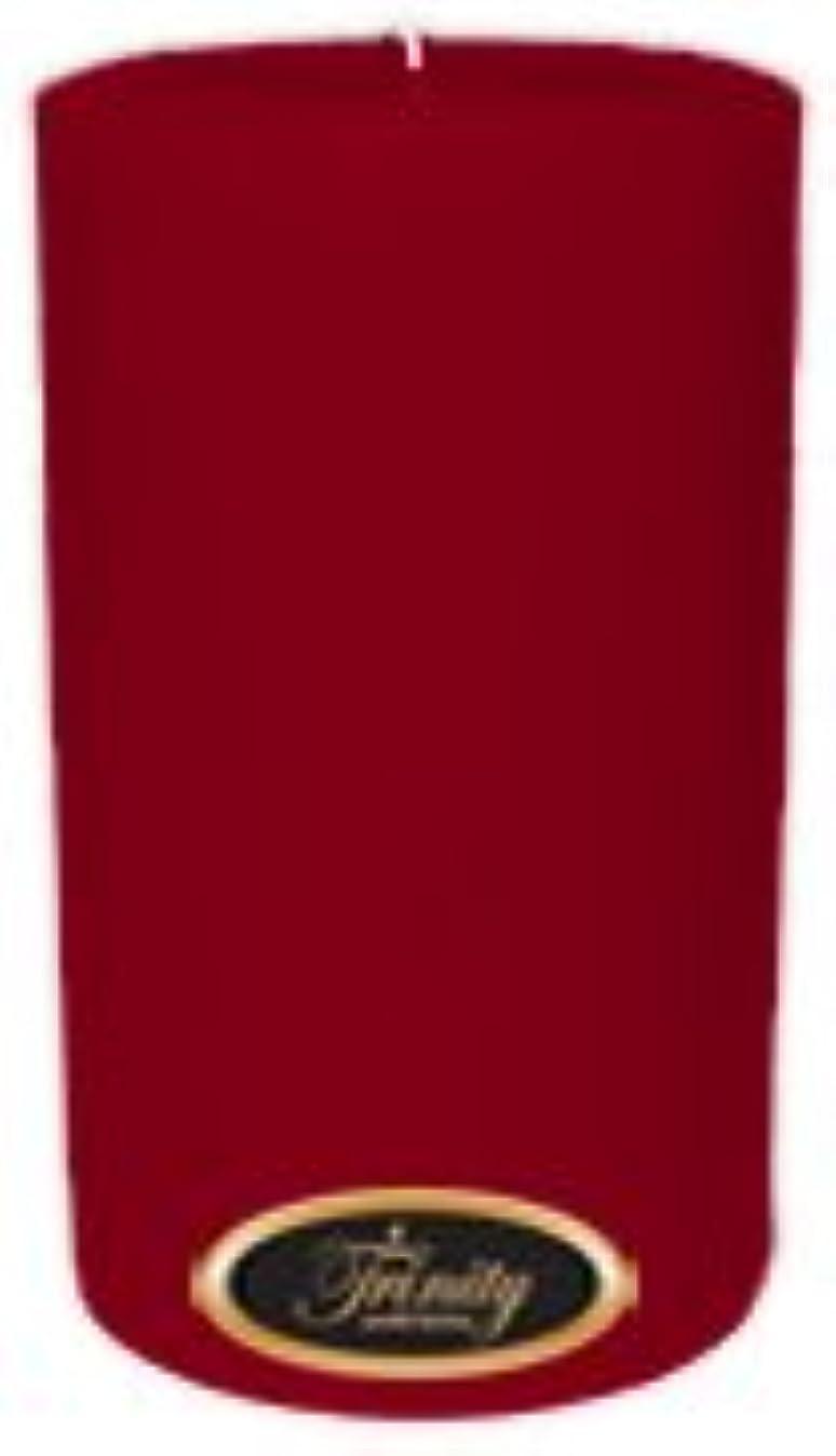 伝導率クライアント可決Trinity Candle工場 – Cinnamon Swirl – Pillar Candle – 4 x 6