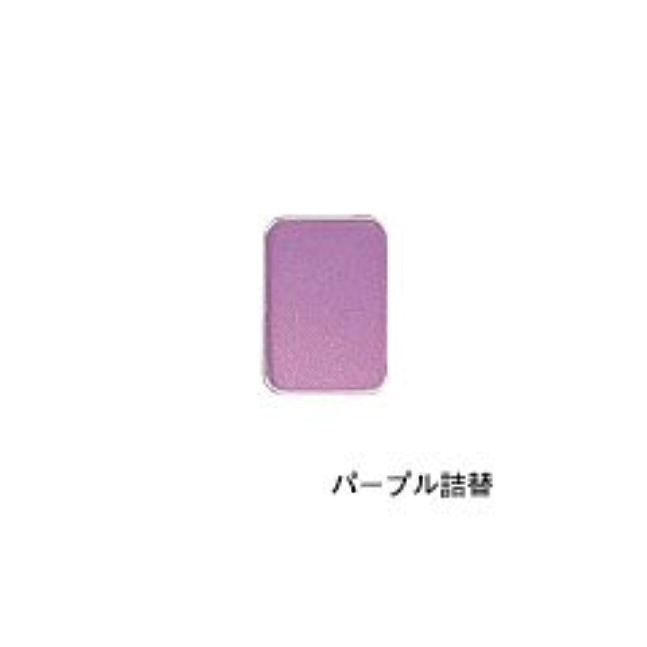 キラウエア山クーポン主リマナチュラル ピュアアイカラー 詰替用 パープル×2個       JAN:4514991230446