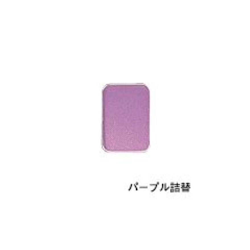 咲く苦しめるリースリマナチュラル ピュアアイカラー 詰替用 パープル×2個       JAN:4514991230446