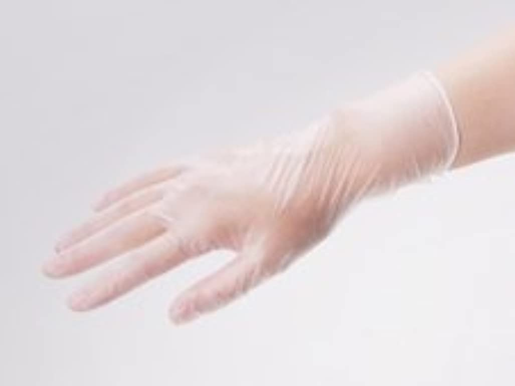 ゲートウェイ軽量運ぶエクセレント プラスチック手袋 PVC-200PF Lサイズ(100枚入)
