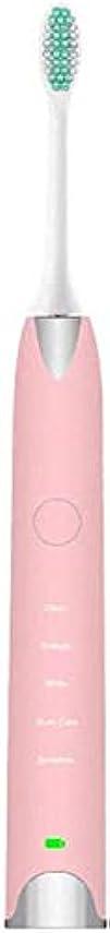 カイウス現在涙電動歯ブラシ、ソニック歯ブラシ、ソフト髪防水電動歯ブラシを運ぶために完全自動サイレントタイプ7防水で便利なUSB充電 (Color : Pink)