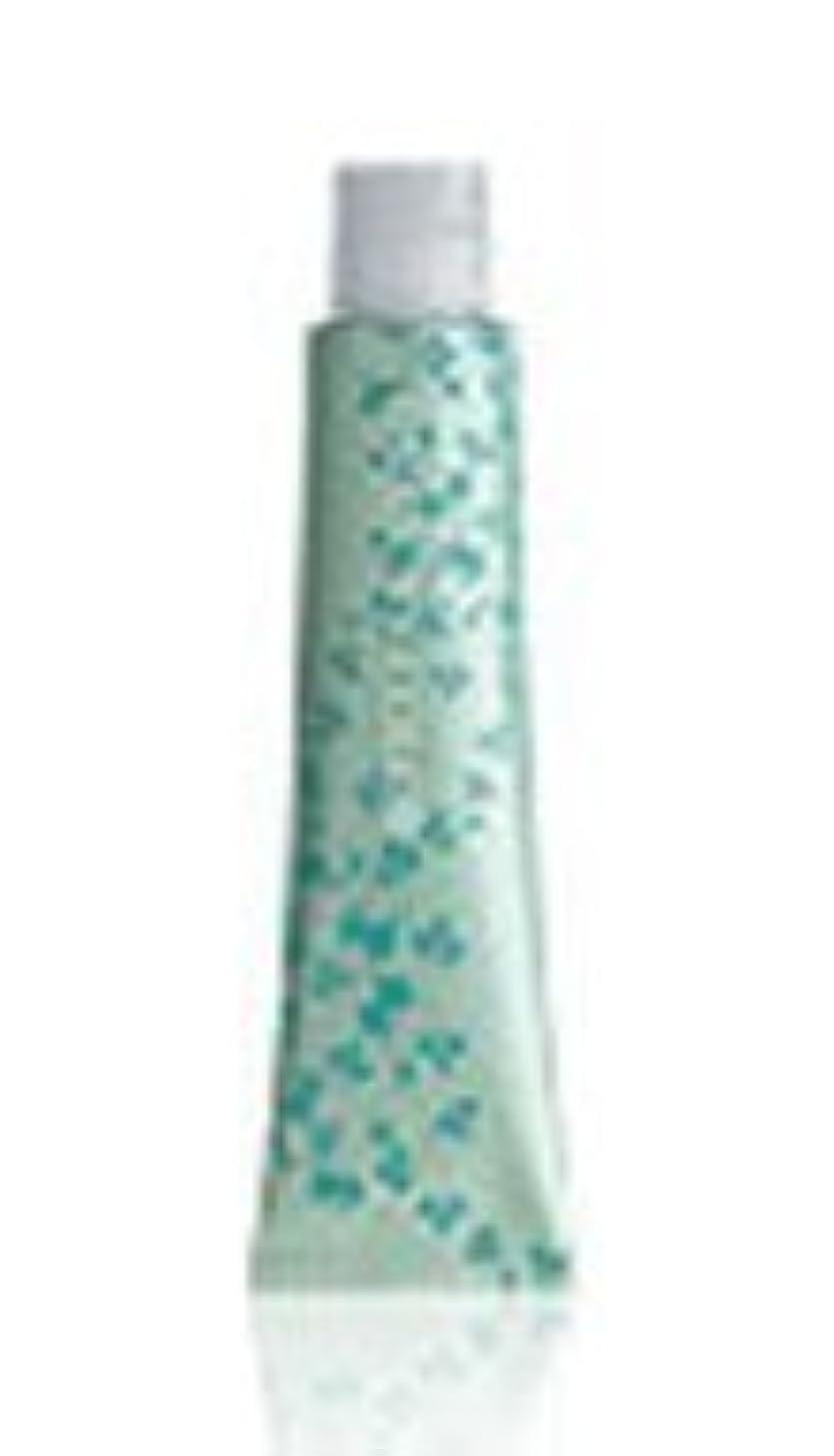 グラス彫刻補充ナプラ グレイシスカラー GN8 80g