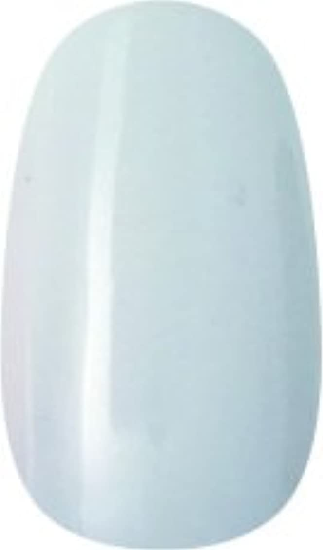 スタウト重量パズルラク カラージェル(67-アイスホワイト)8g 今話題のラクジェル 素早く仕上カラージェル 抜群の発色とツヤ 国産ポリッシュタイプ オールインワン ワンステップジェルネイル RAKU COLOR GEL #67