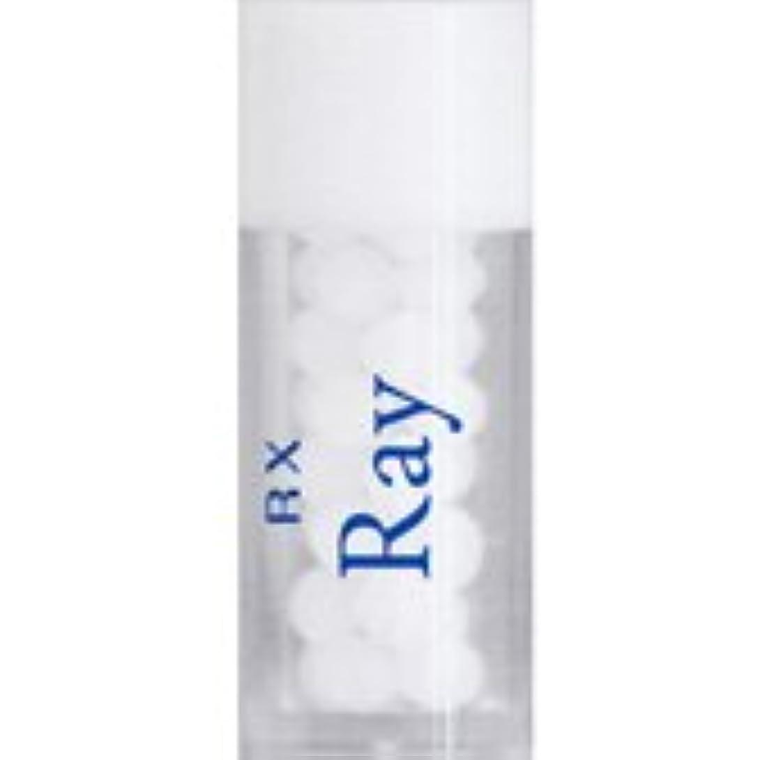 ポーチサージチャンピオンシップRX レメディー 単品 (RX Ray)