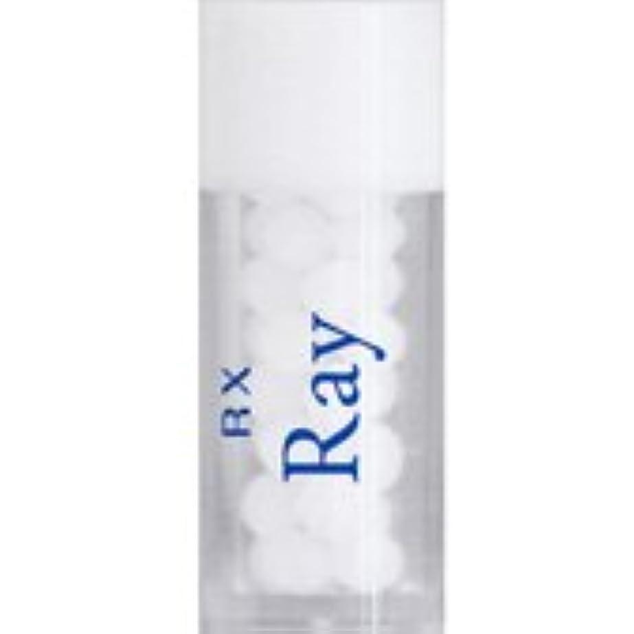 真向こうキャンパスに向けて出発RX レメディー 単品 (RX Ray)