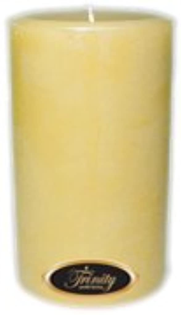 バイバイどうしたのアーティキュレーションTrinity Candle工場 – French Vanilla – Pillar Candle – 4 x 6