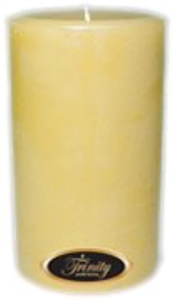 言及する燃料恐怖Trinity Candle工場 – French Vanilla – Pillar Candle – 4 x 6