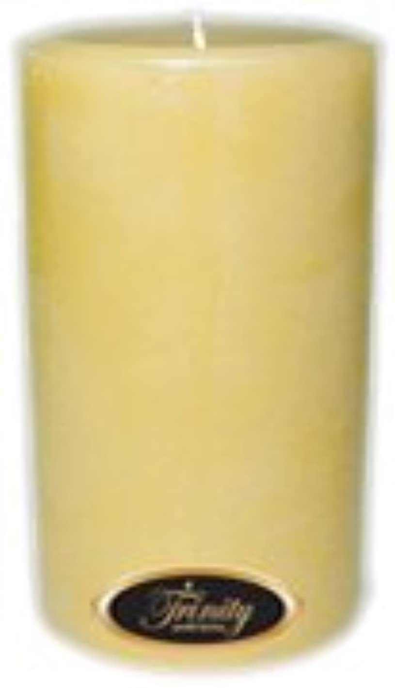 浸漬抑制する案件Trinity Candle工場 – French Vanilla – Pillar Candle – 4 x 6