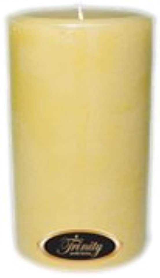 ピンチ禁輸明確なTrinity Candle工場 – クリーミーバニラ – Pillar Candle – 4 x 6