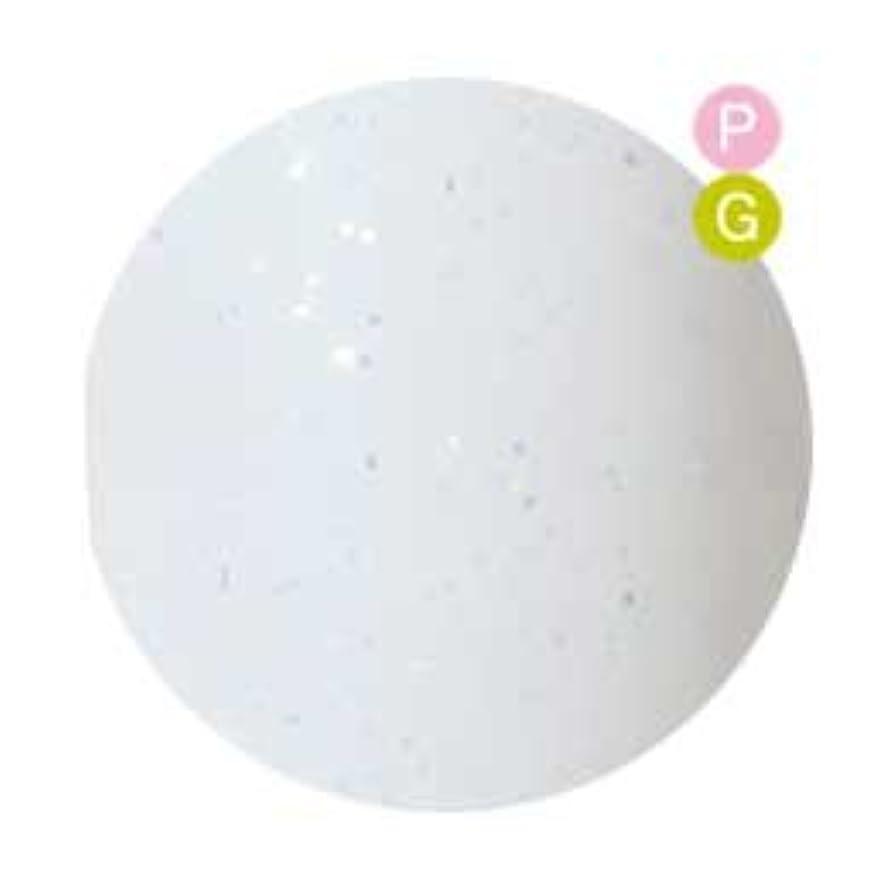 ペルー等楽しいPalms Graceful カラージェル 3g 034 ホワイトダスト