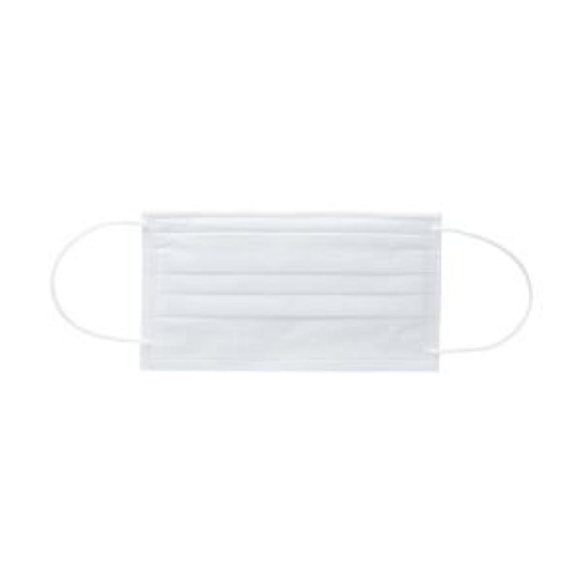 センターアリーナ素晴らしさ(業務用セット) フォーカス 不織布マスクValue レギュラー ホワイト 1箱(50枚) 【×10セット】
