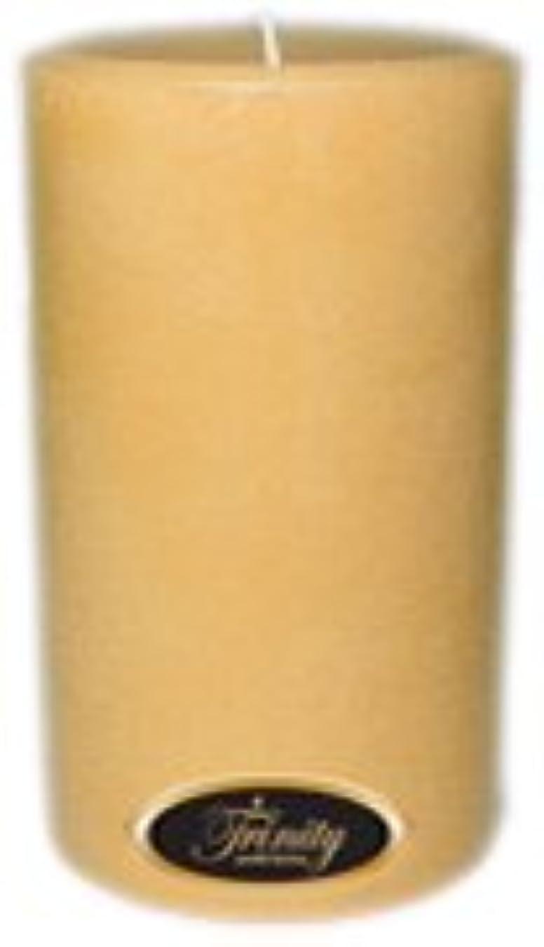 ポンド新しい意味メルボルンTrinity Candle工場 – レザー – Pillar Candle – 4 x 6