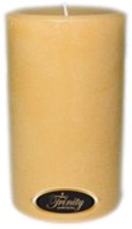 皿違反ビールTrinity Candle工場 – レザー – Pillar Candle – 4 x 6