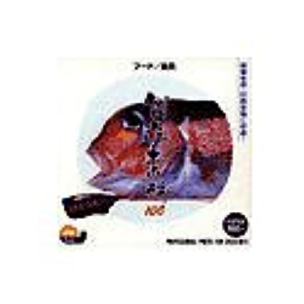 シャイうまれた謙虚創造素材100 フード/魚貝