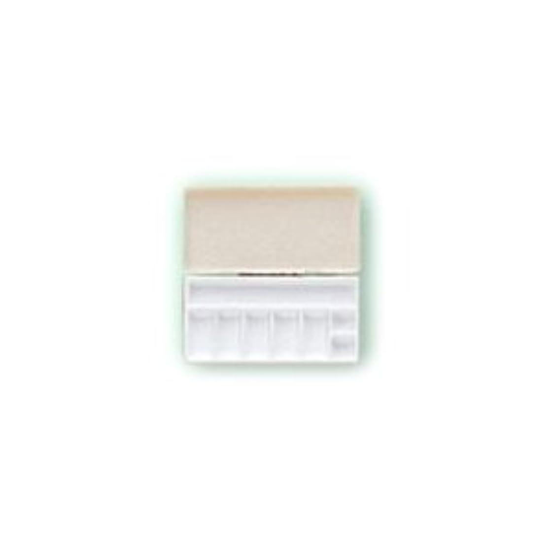 憂鬱な良心的歯科の三善 パレット メイクアップパレット 携帯用パレット 106×53mmサイズ 1 (C)
