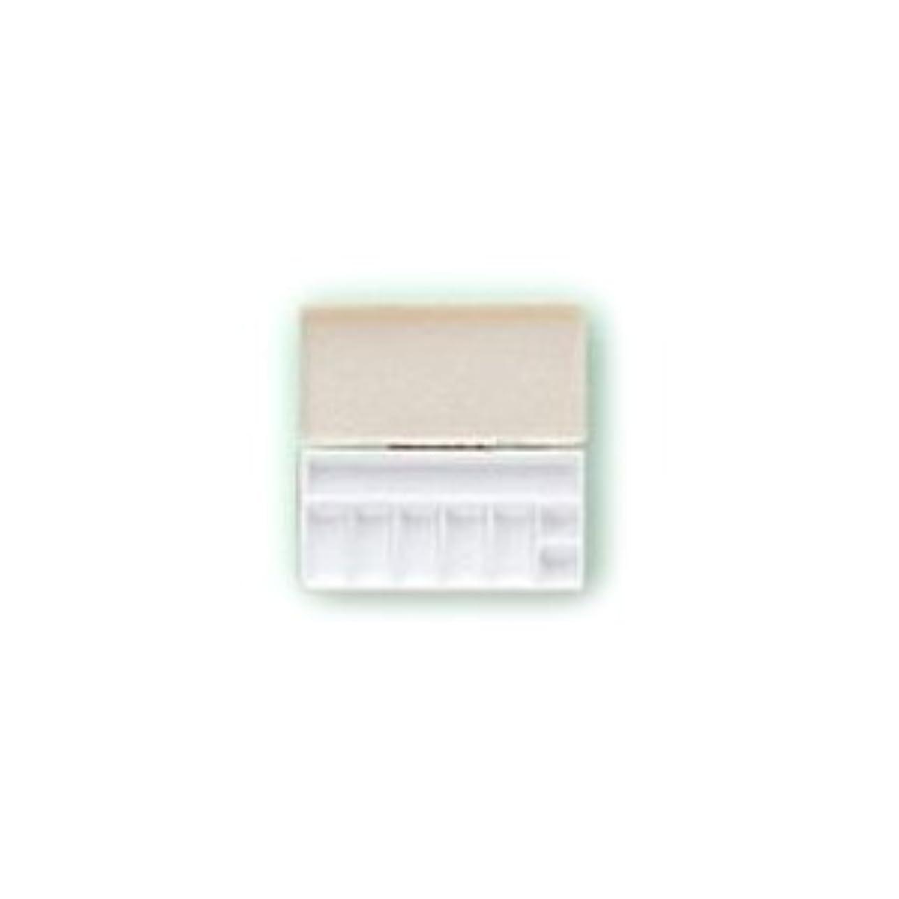 誤って相手に変わる三善 パレット メイクアップパレット 携帯用パレット 106×53mmサイズ 1 (C)
