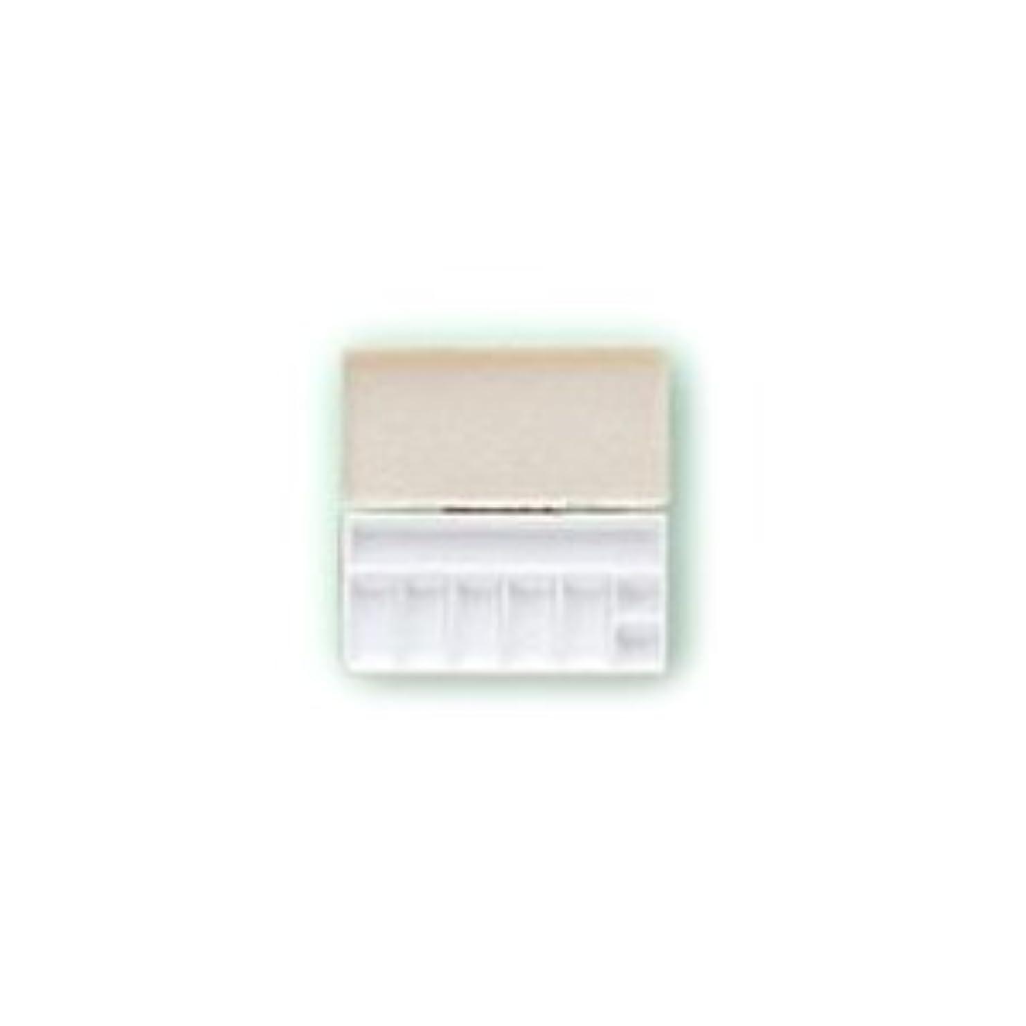 仲間スズメバチメタン三善 パレット メイクアップパレット 携帯用パレット 106×53mmサイズ 1 (C)