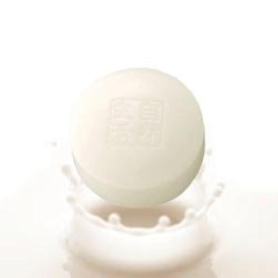 健康単なる痛い豆腐の盛田屋 豆乳せっけん 100g