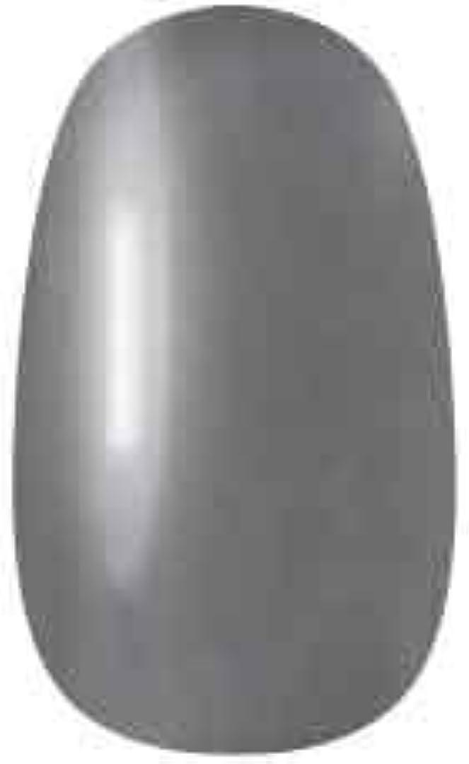雄大な固体灰ラク カラージェル(073-ベースジェル)8g 今話題のラクジェル 素早く仕上カラージェル 抜群の発色とツヤ 国産ポリッシュタイプ オールインワン ワンステップジェルネイル RAKU COLOR GEL #73