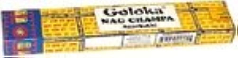 開発電気無駄だNag Champa – Galoka Incense Sticks 40グラムボックス