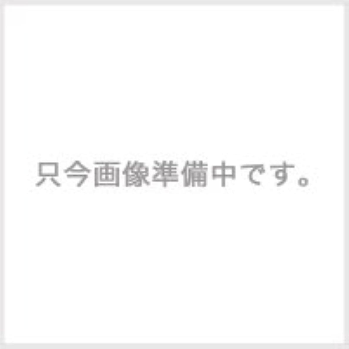 みすぼらしいパテ好意的コタ スタイリング SH スーパーハードジェル 100g