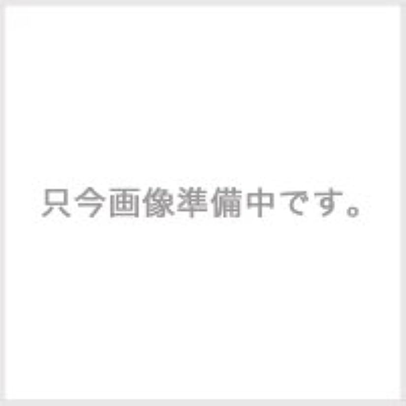 トラフィックチキンテンポコタ スタイリング SH スーパーハードジェル 100g