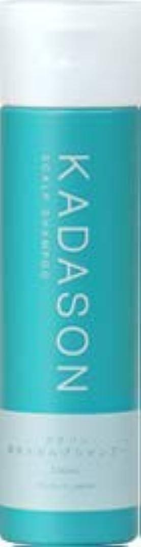 薄い解体する宣言[ 医薬部外品 ] KADASON (カダソン) スカルプシャンプー 250ml (日本製) 脂性肌 薬用シャンプー 天然由来成分