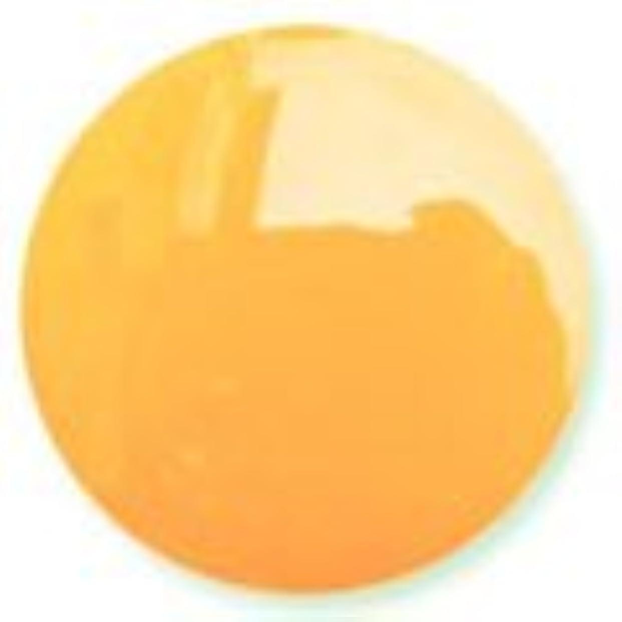保存丈夫ぬいぐるみハニーオレンジ ソークオフジェル(ソフトジェル)LED/UV対応 8g NC016