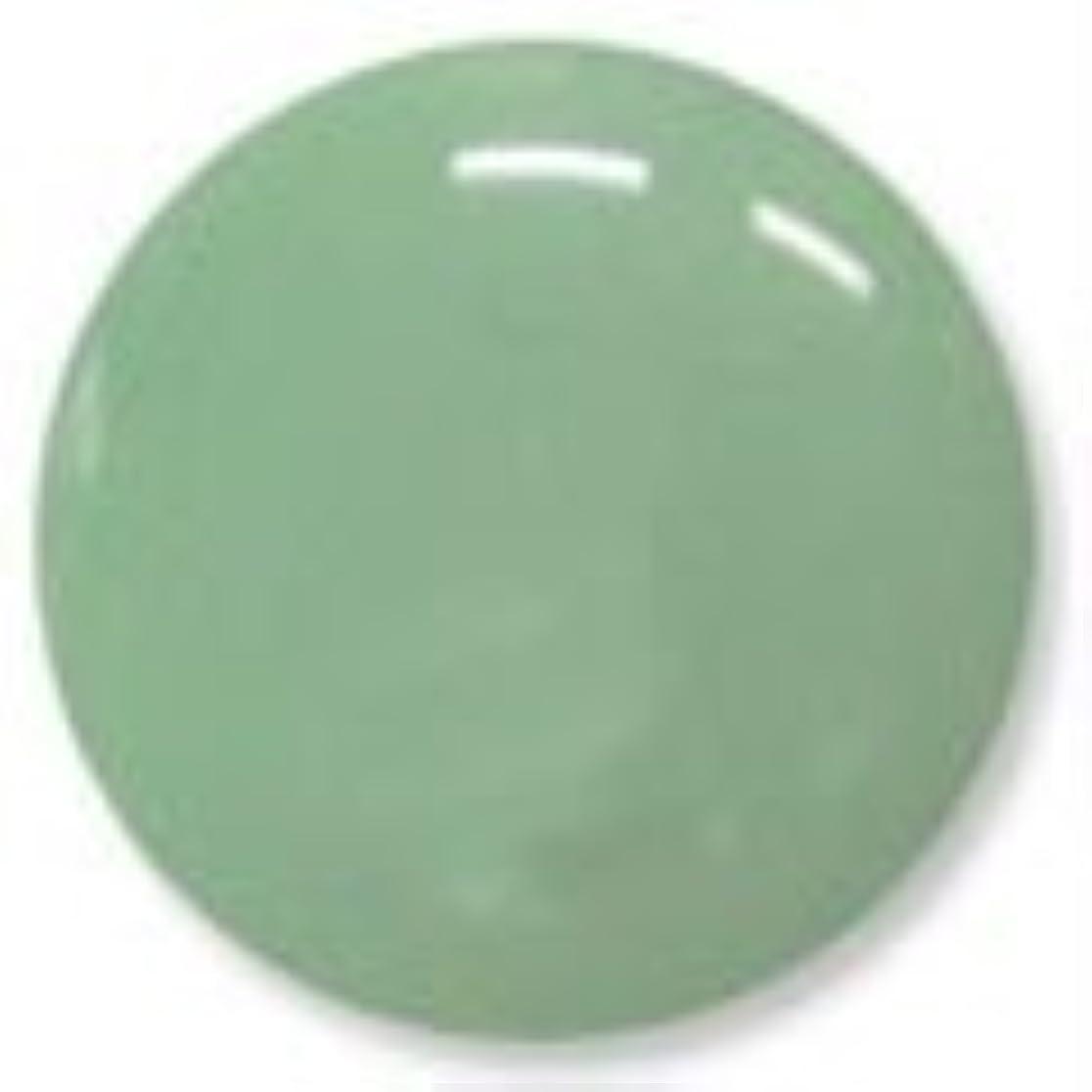 教科書納屋被るオリーブグリーン ソークオフジェル(ソフトジェル)LED/UV対応 8g NC033