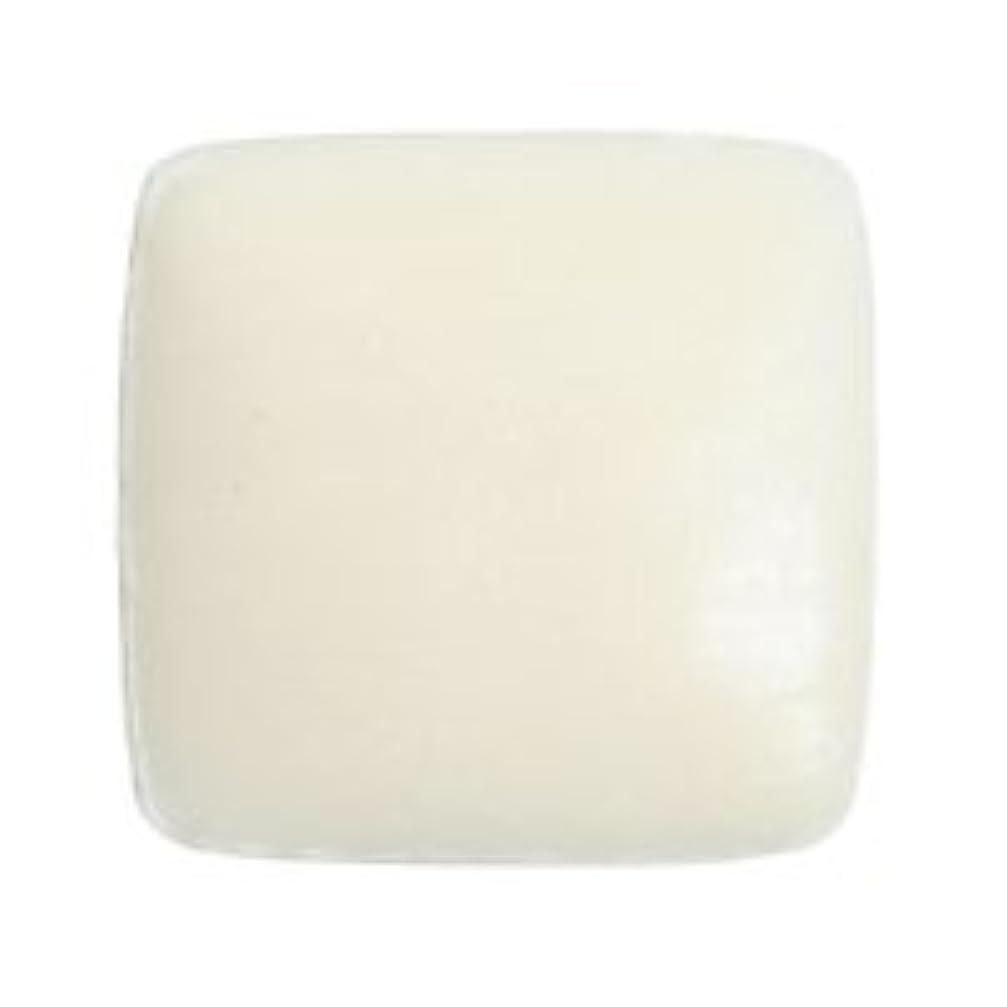 実際記憶スクリュードクターY ホワイトクレイソープ80g 固形石鹸