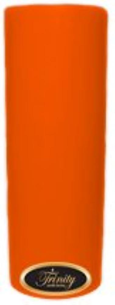 炎上中古条約Trinity Candle工場 – フロリダオレンジ – Pillar Candle – 3 x 9