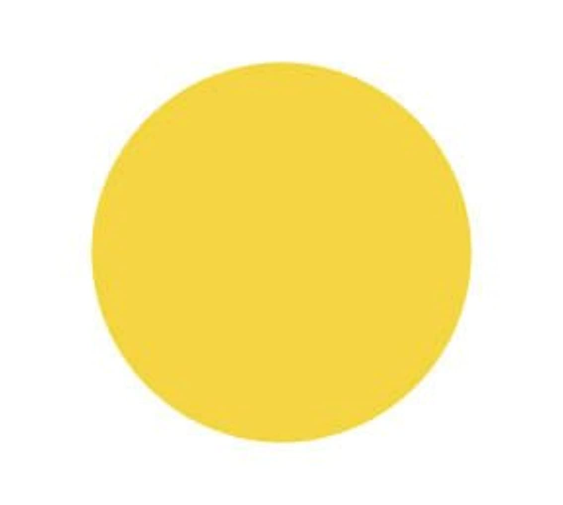 目覚める視力タールバイオスカルプチュア(バイオジェル) カラージェル 〔4g〕 (2) 2030:ダッフォディル