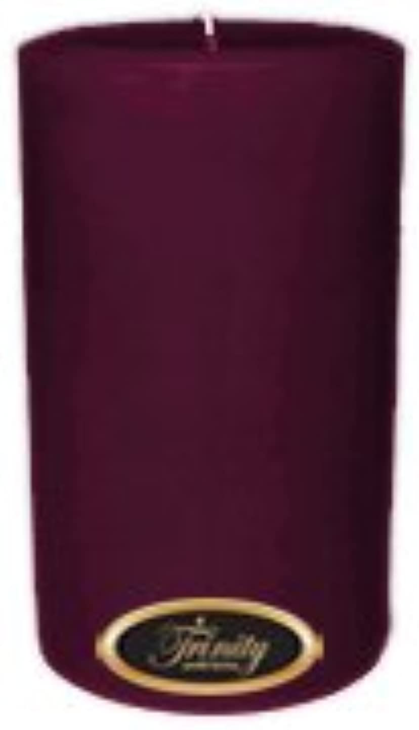 睡眠学校教育放棄するTrinity Candle工場 – Wisteria – Pillar Candle – 4 x 6