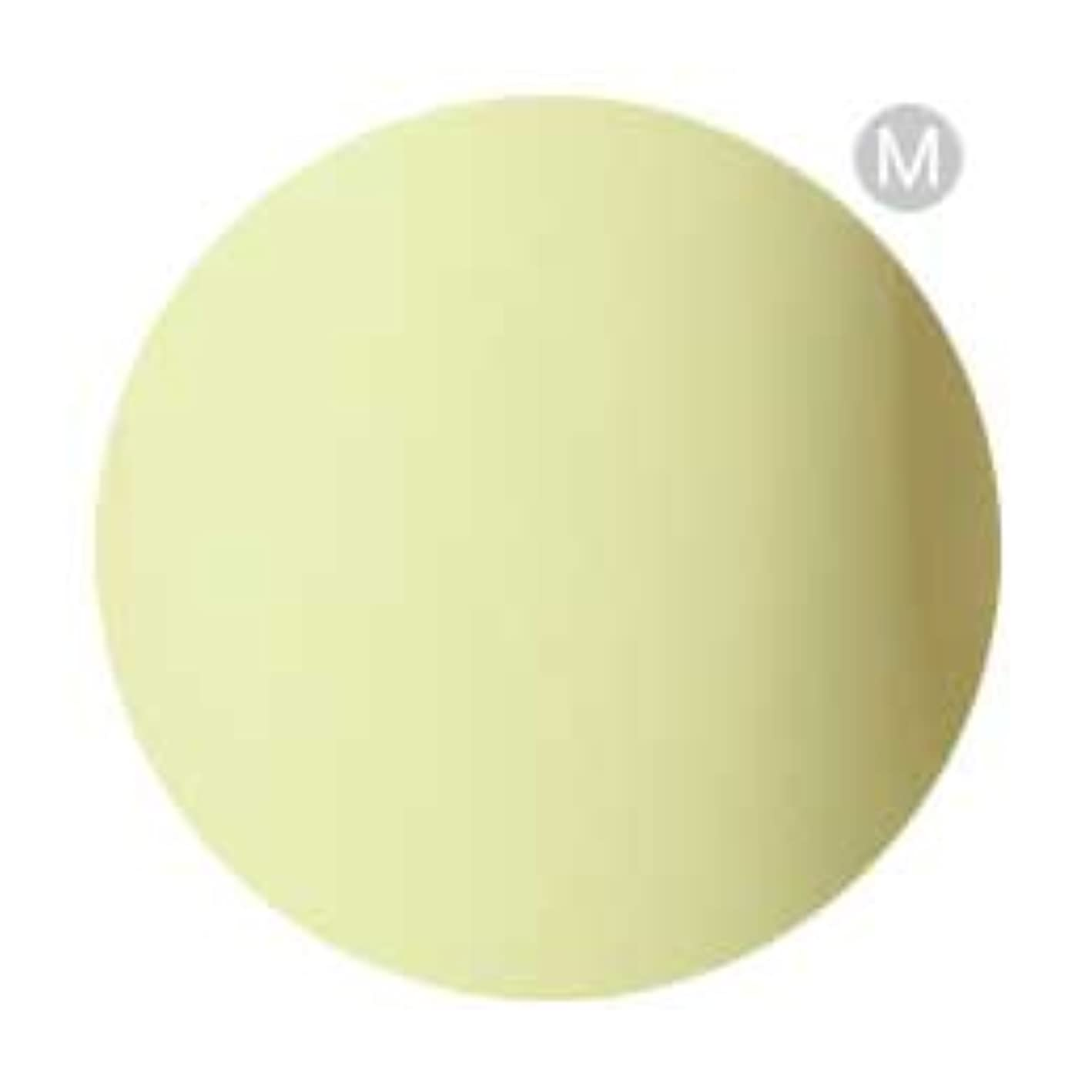 極めて重要なフェローシップ低いPalms Graceful カラージェル 3g 009 パステルレモン