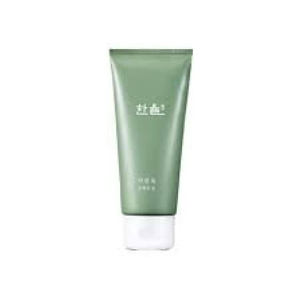 大洪水扱う拒絶Hanyul Pure Artemisia Cleansing Foam 6.1 Ounce [並行輸入品]