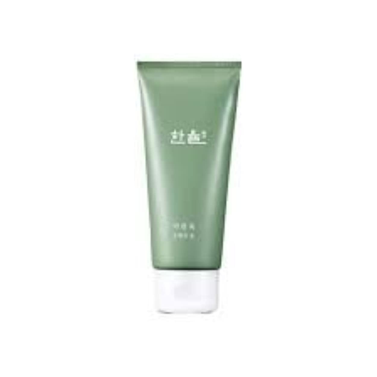 Hanyul Pure Artemisia Cleansing Foam 6.1 Ounce [並行輸入品]