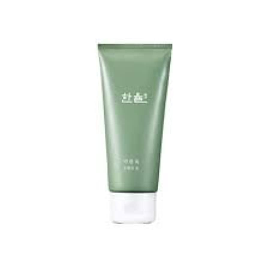 排出比較的早めるHanyul Pure Artemisia Cleansing Foam 6.1 Ounce [並行輸入品]