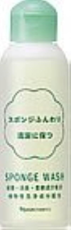 サーバ閉じるレーザナリス スポンジウォッシュ N 80ml×2本セット